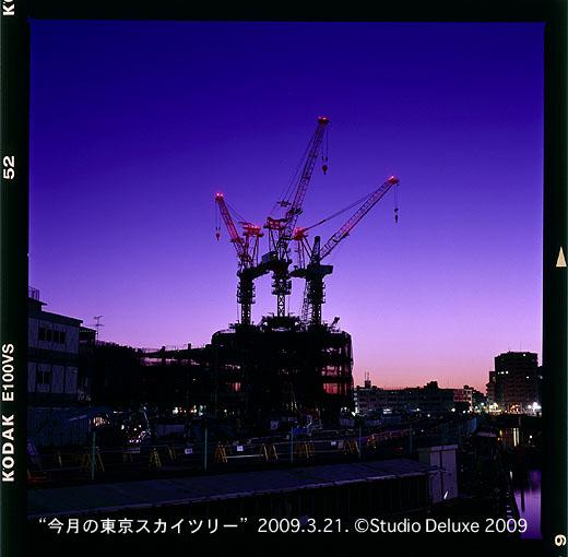 20090321スカイツリー夜明03.jpg