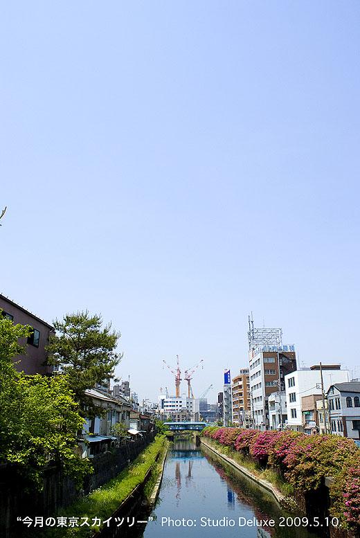 2009_05_10-52.jpg