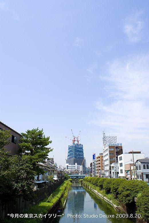2009_08_20-52.jpg