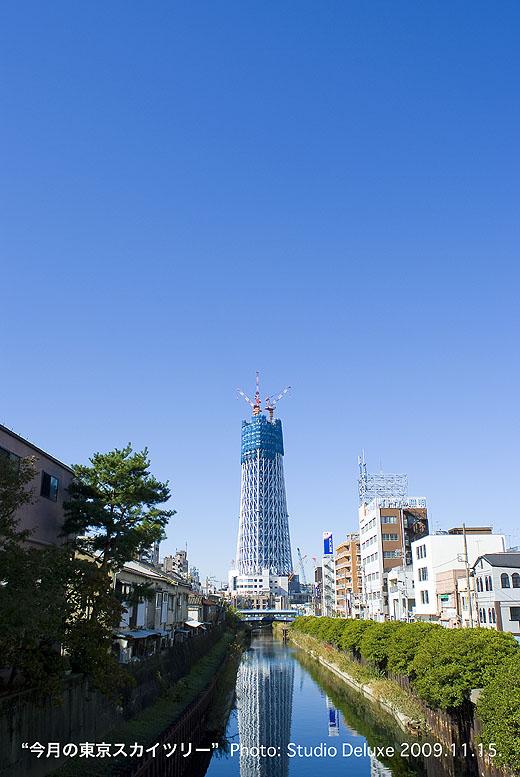 2009_11_15-52.jpg