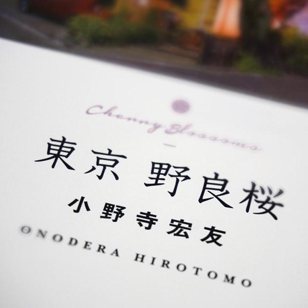 野良桜ティザー63.jpg