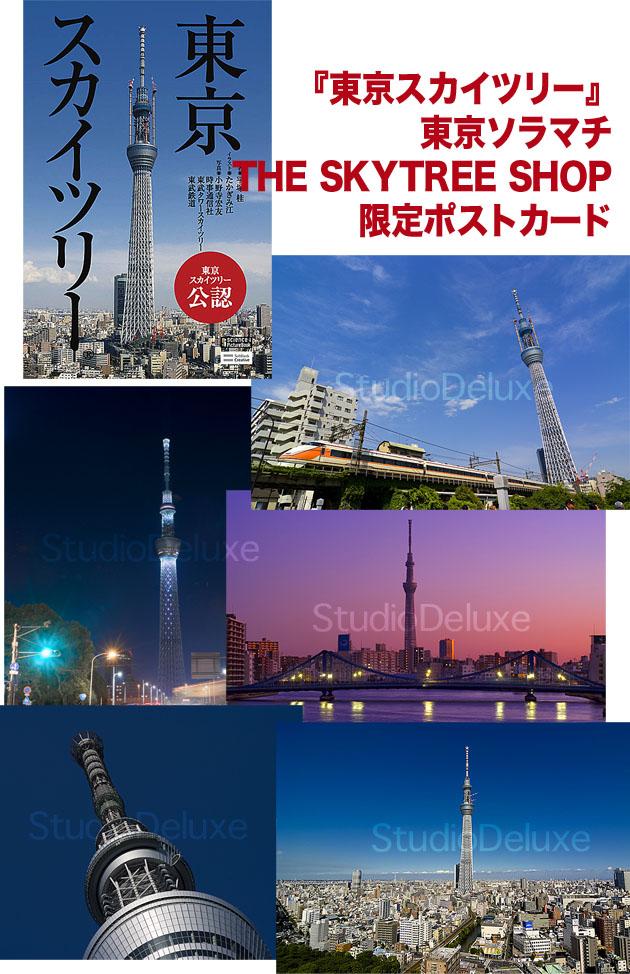 skycard.jpg