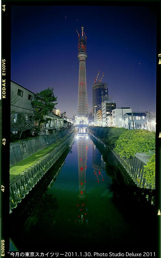 20110130深夜さかさツリー.jpg